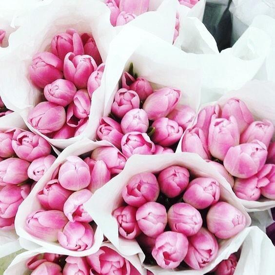 Mood ✨  Adventurous, excited, unstoppable and grateful 🕊  #ValentinaandValentia #mood #adventures #flowers