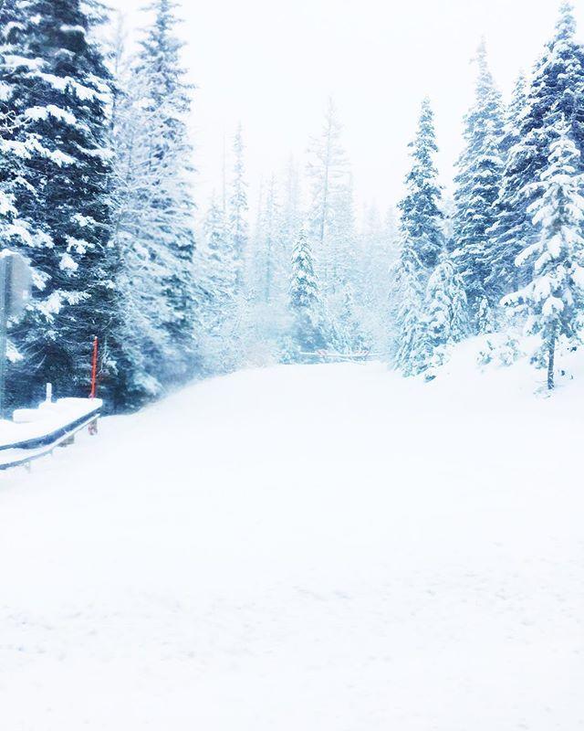 Winter Escape ✨  #ValentinaandValentia #travel #north #mountains #wonderland #wonderlust #pnw #snow