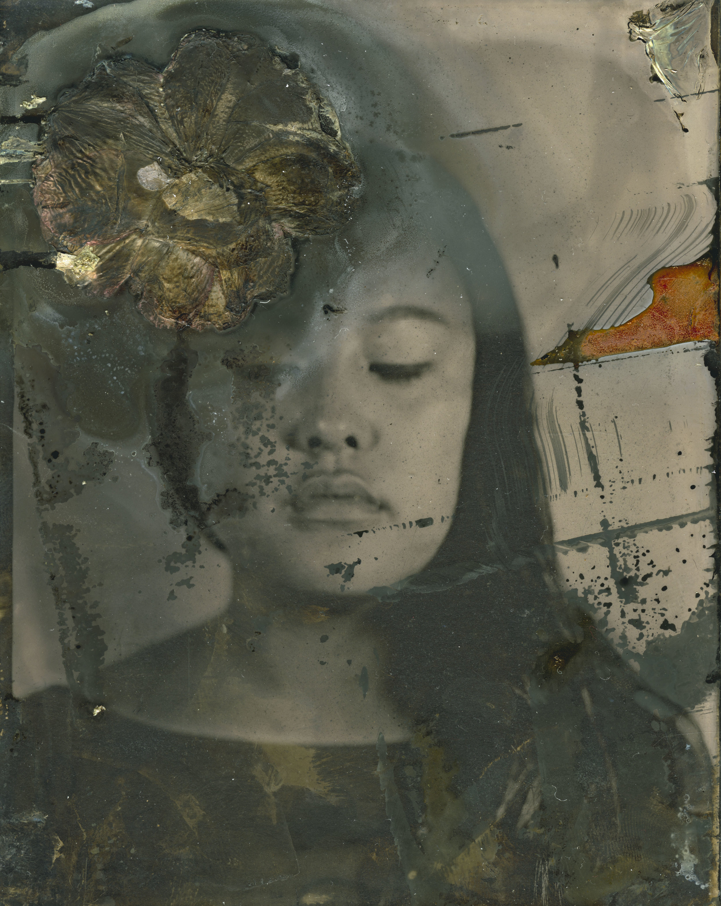 yl_collodion006.jpg