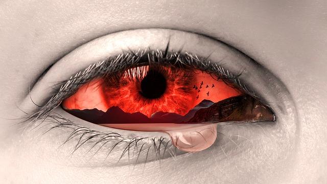 eye-2274884_640.jpg