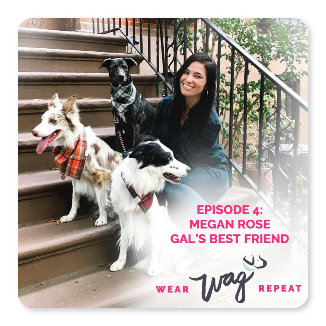 Podcast with NYC Blogger on Wear Wag Repeat Podcast