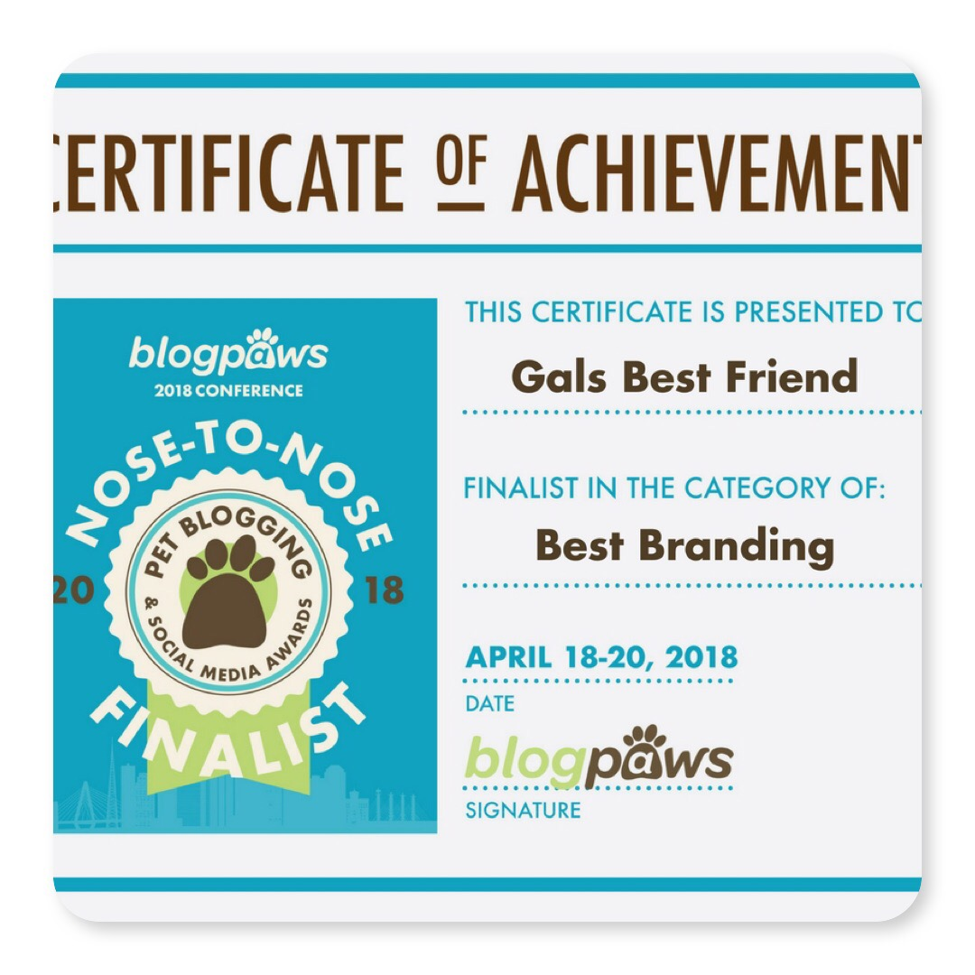 Finalist at BlogPaws 2018 for Best Branding