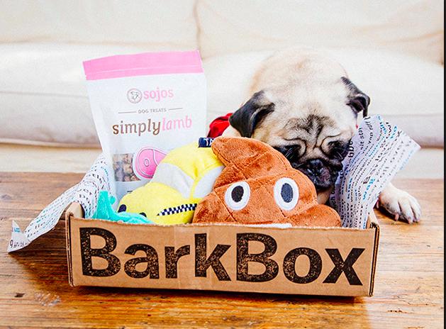 gals best friend barkbox