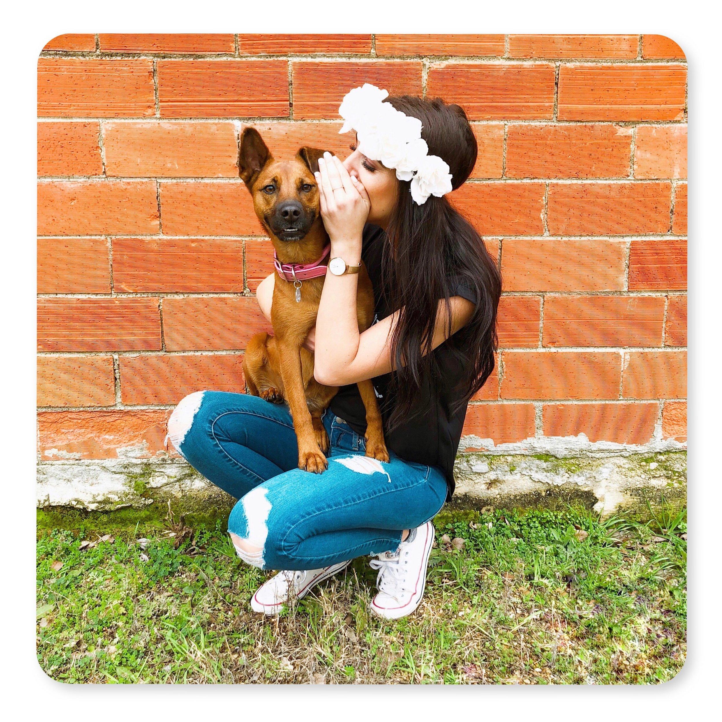 dogdates_galsbestfriend