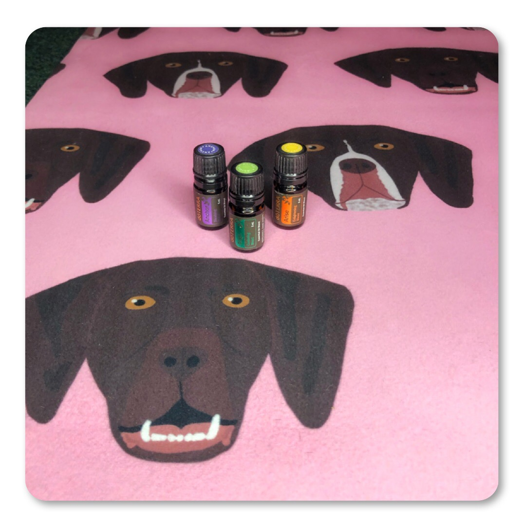 My 12 Past 7 Designs yoga mat paired with my doTERRA yoga collection is PERFECT-ZEN! See what I did there?