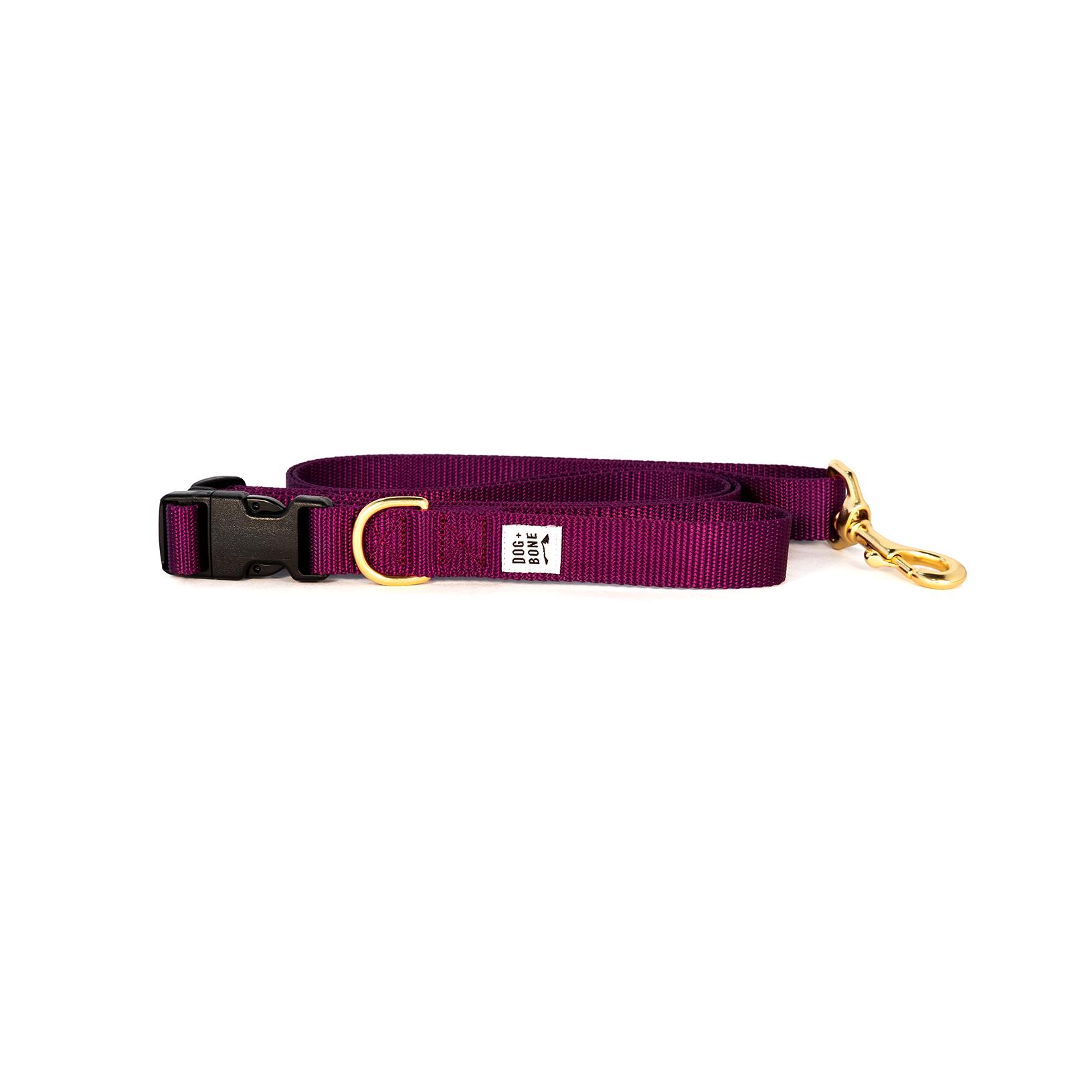 Leash_Adjustable_Purple_1_54e59648-0172-4af0-a0d6-97bef04e940b_2048x2048.png