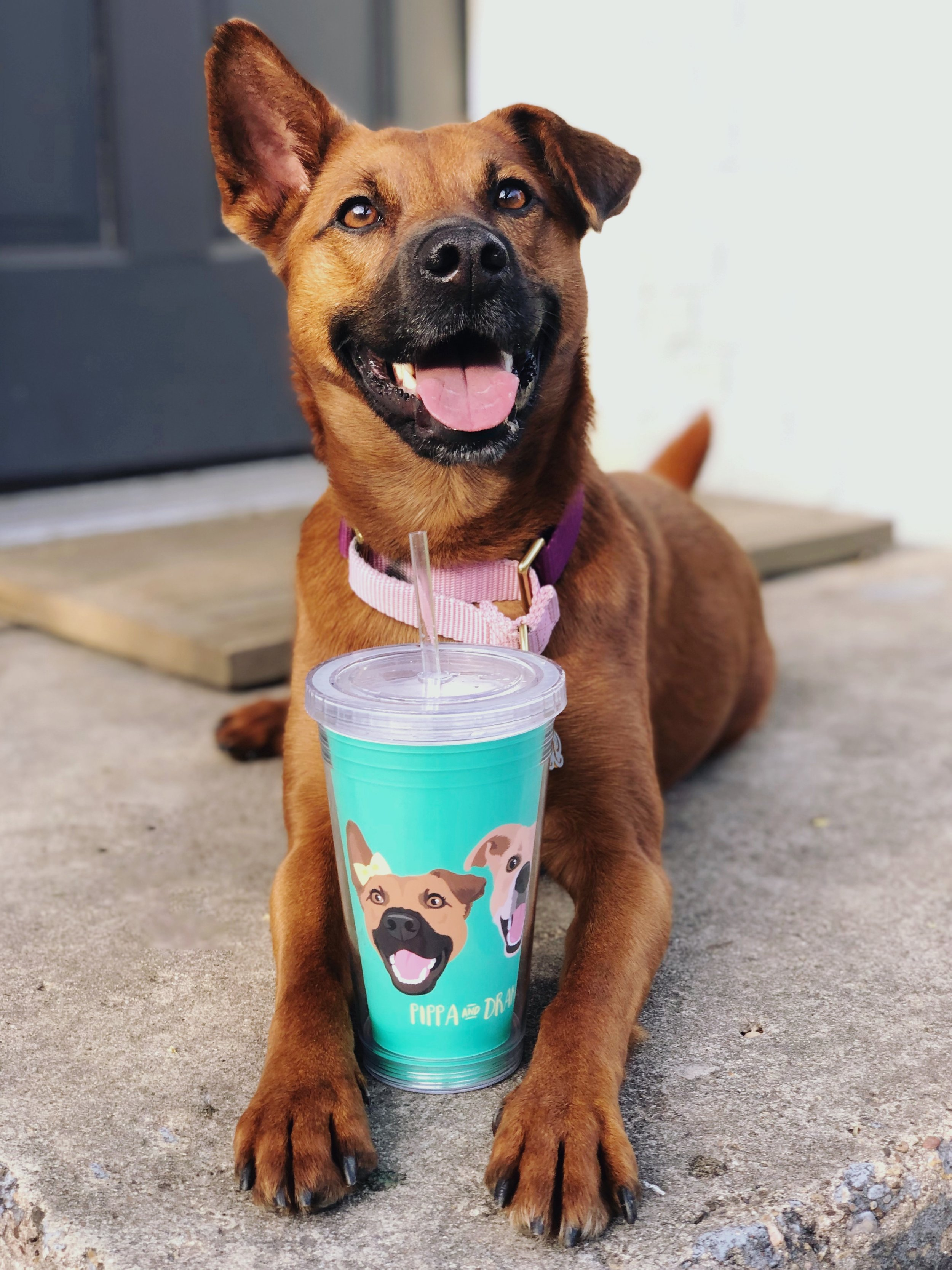 Pippa Cup.jpg