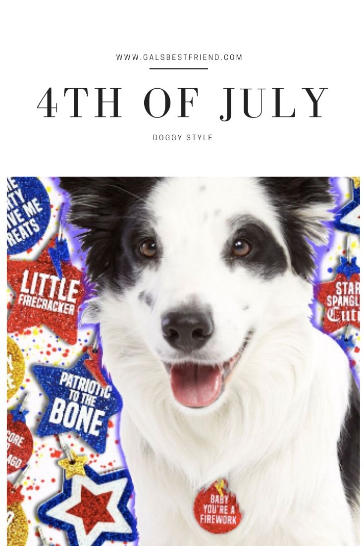 gals best friend 4th of july dog