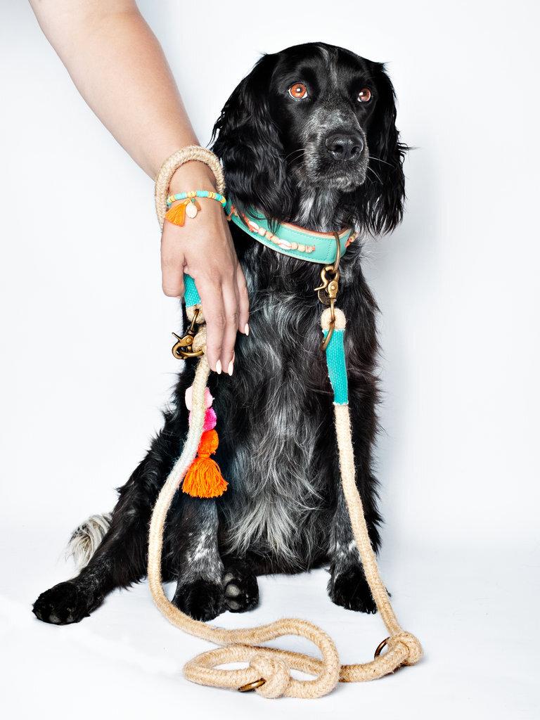 binck-dog-leash-pink-pompom.jpg