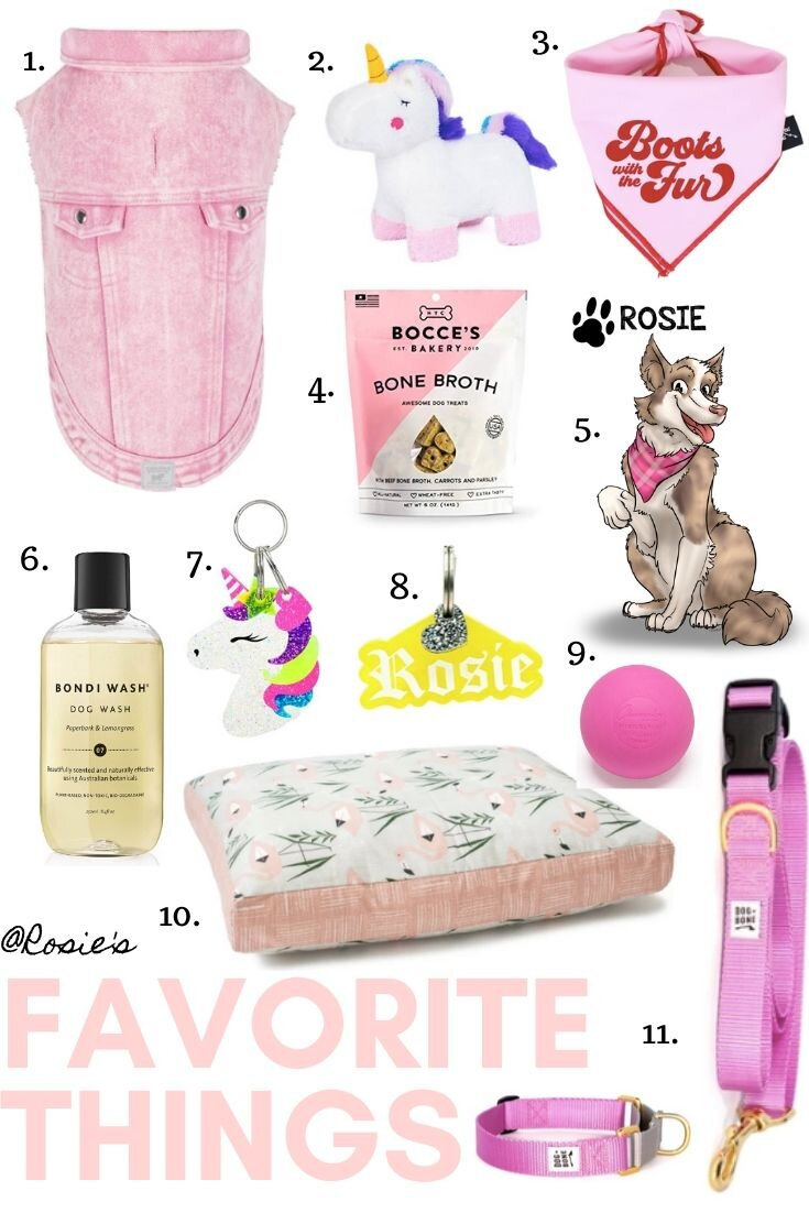 girl-dog-gift
