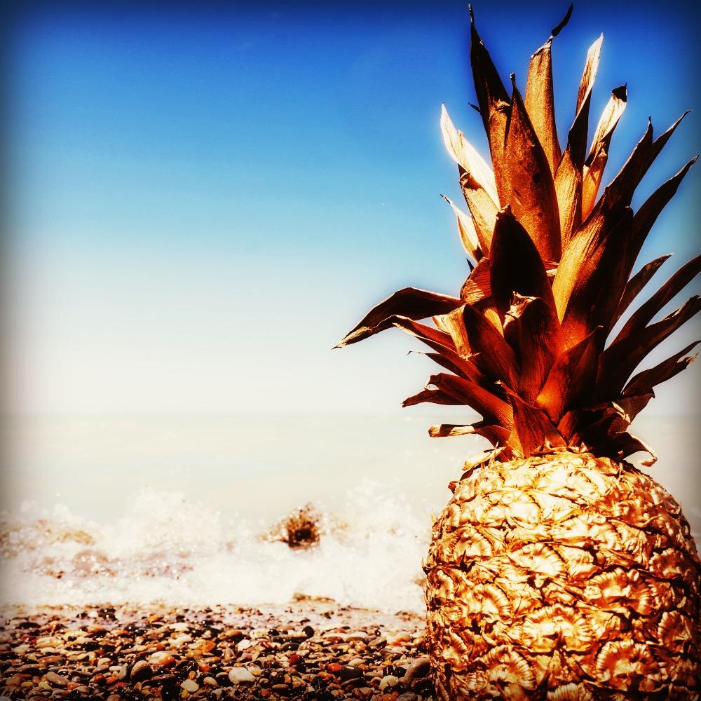 pineappleabundance.jpg