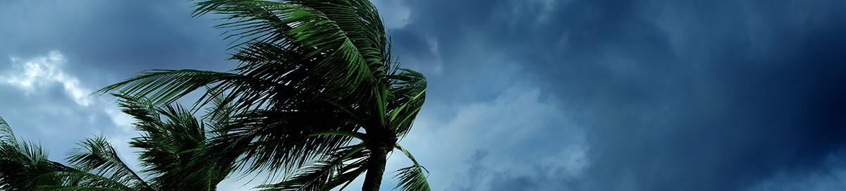 Storm Prep Banner.jpg