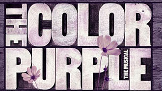 THE COLOR PURPLE   MUSICAL - WASHINGTON DC Price: $69 - $149