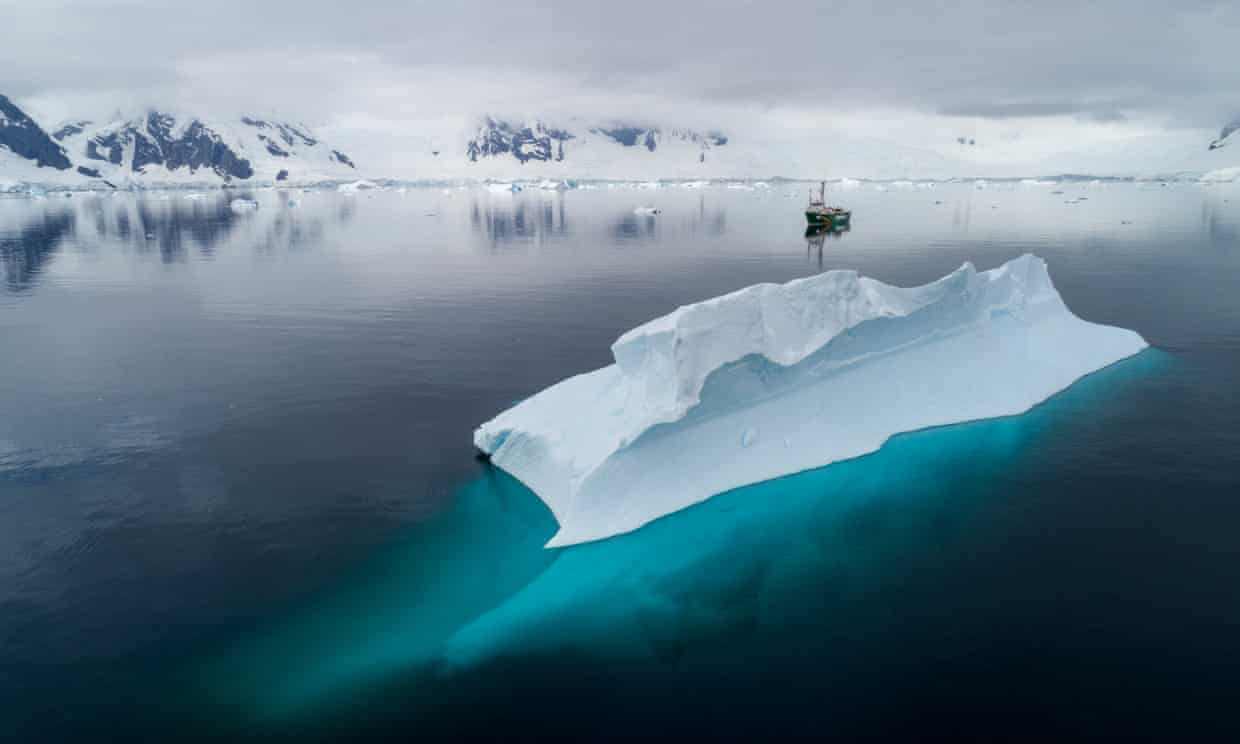 Ocean sanctuaries would provide protection for wildlife populations and ecosystems, allowing them to recover and thrive.' The Greenpeace ship Arctic Sunrise in Charlotte Bay, Antarctica. Photograph: Christian Åslund/Greenpeace