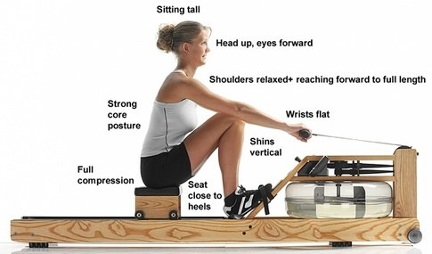 """At full compression, the ideal """"shins vertical"""" position demands adequate ankle mobility to leave heels as close to the footboard as possible."""