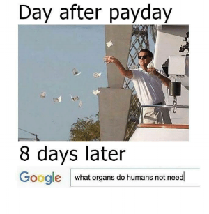 day-after-payday-8-days-later-google-what-organs-do-3623903.png