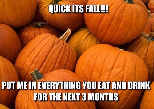 fall-meme-4.jpg