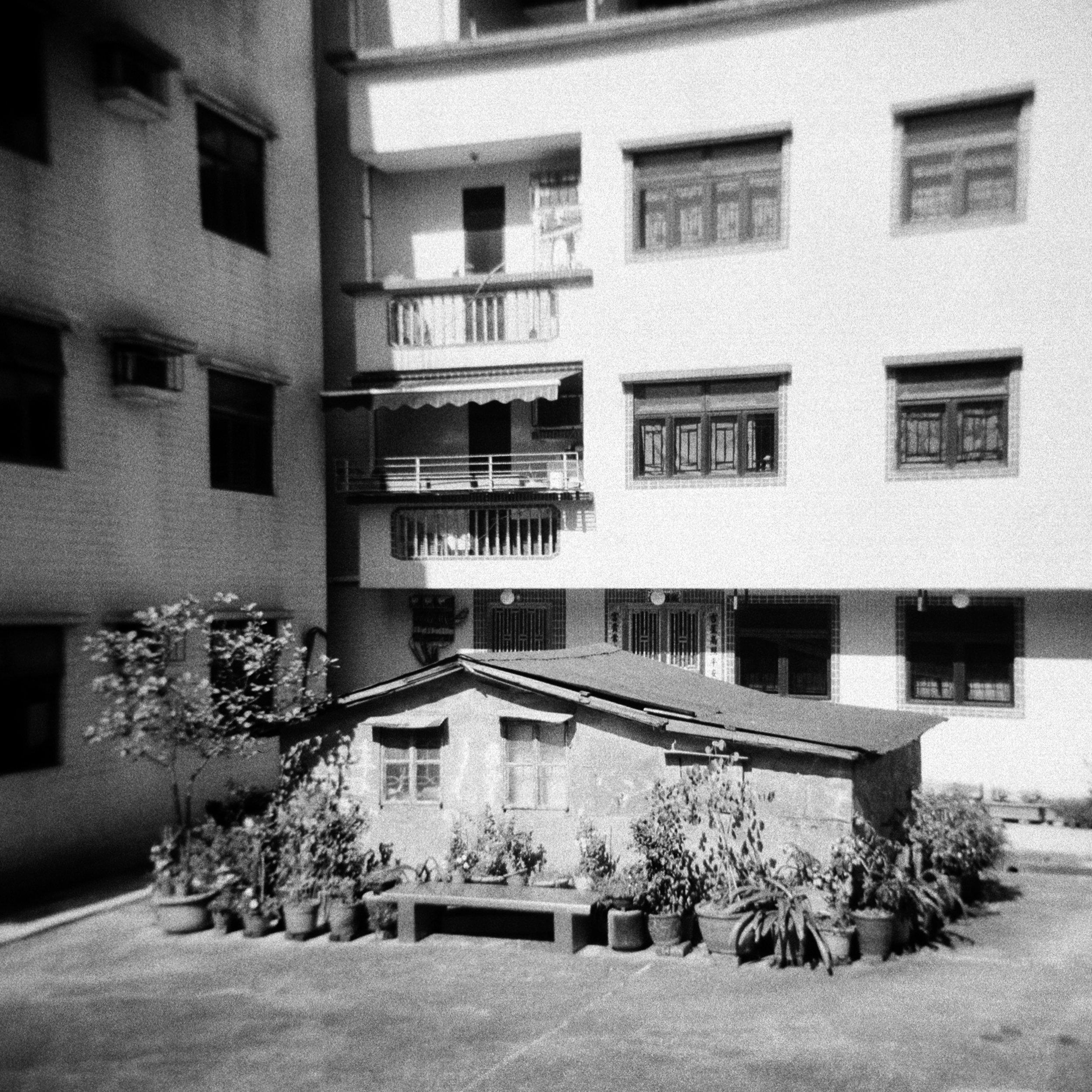 Little House, Roland Buckingham-Hsiao
