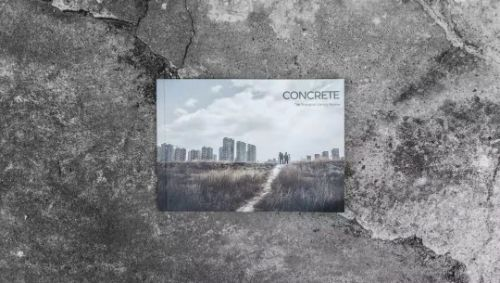 Special edition of TSLR,  Concrete