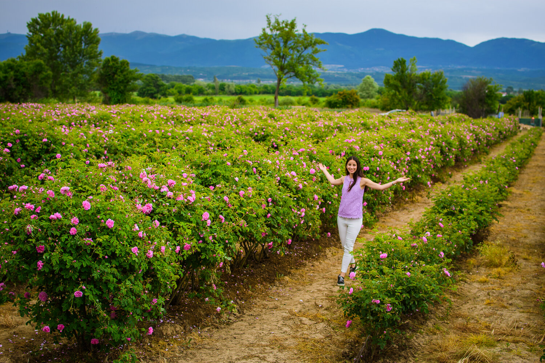 Разходка из Розовата долина на България