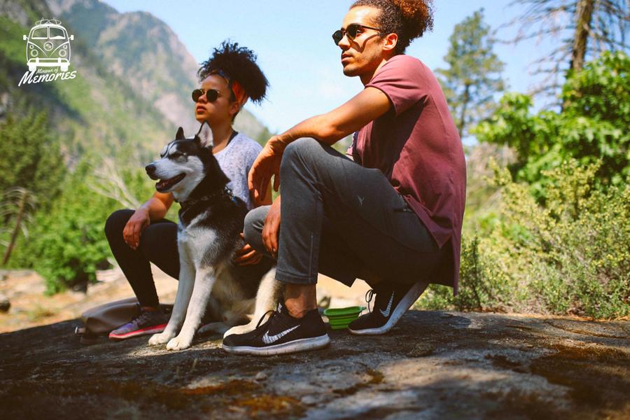 Rocky Mountain National Park, U.S. - @wtwildflowers