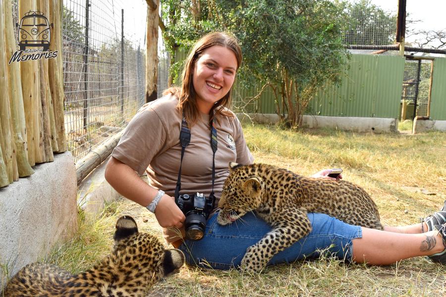 v - Moholoholo Wildlife Rehabilitation Center, 2017