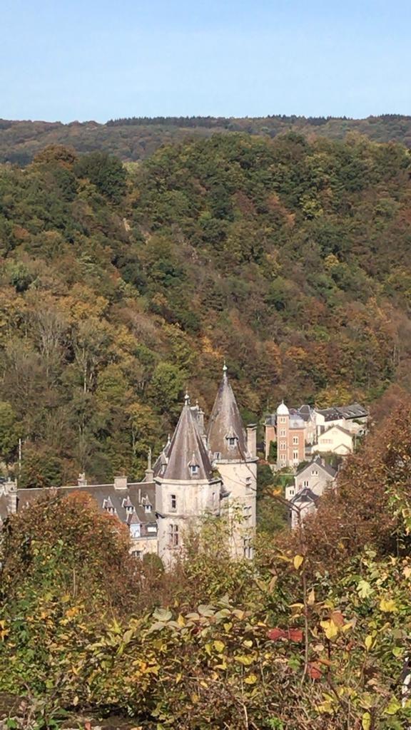 laboitedallumettes-durbuy-city-smallest-belgium-visit-trip-belvedere.jpg