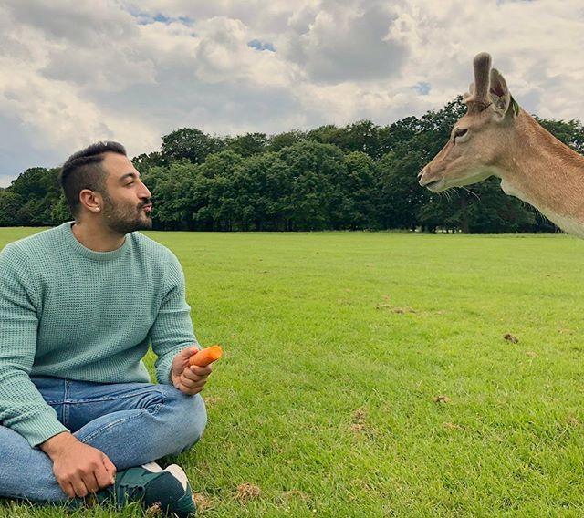 Love at first sight?! I named her Linda. . . . . . #deer #pheonixpark #park #animal #deers #summer #ireland #dublin #afternoon #thursday #wildlife #amor #love