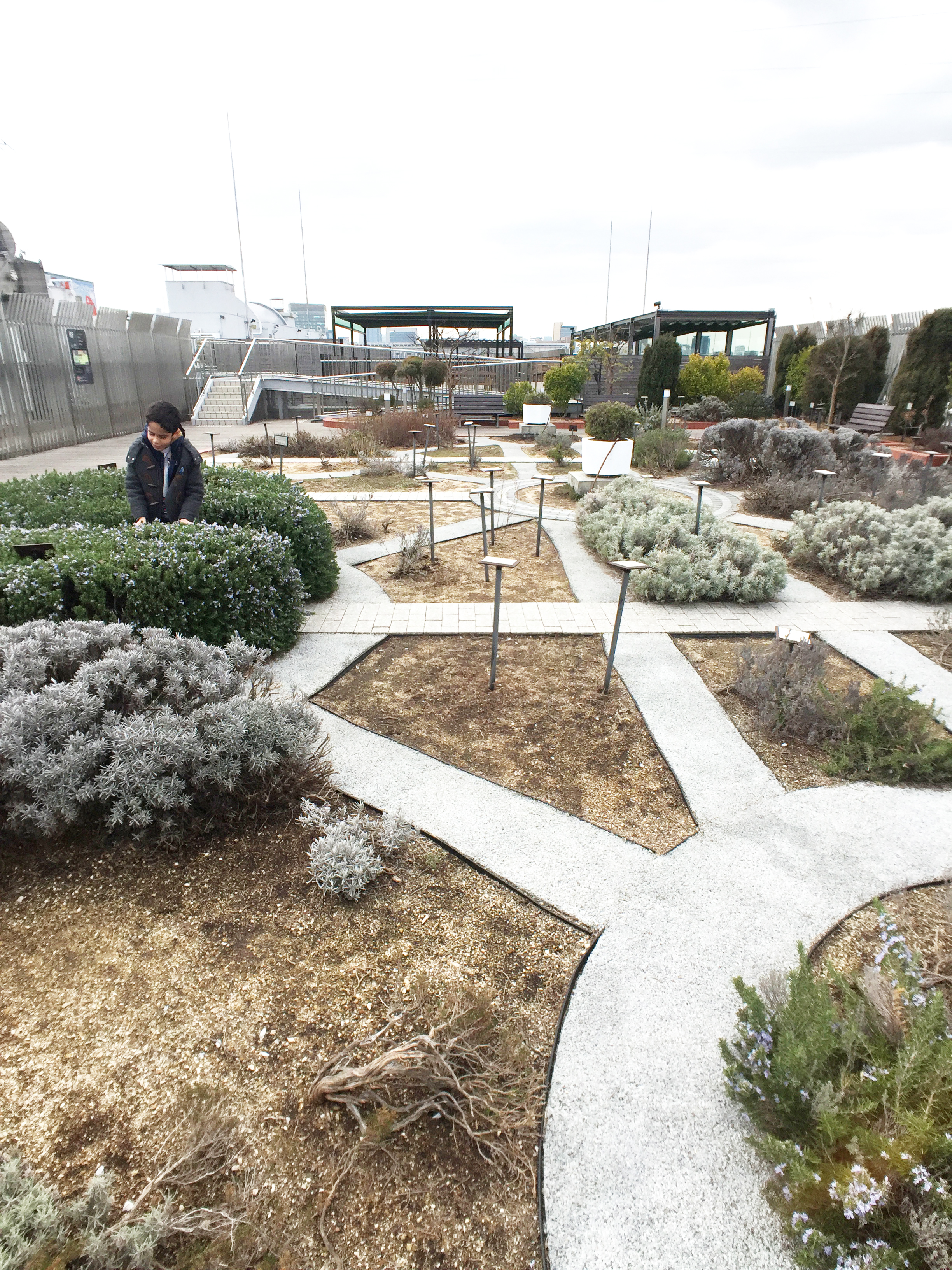 Head to the roof garden for some fresh air!
