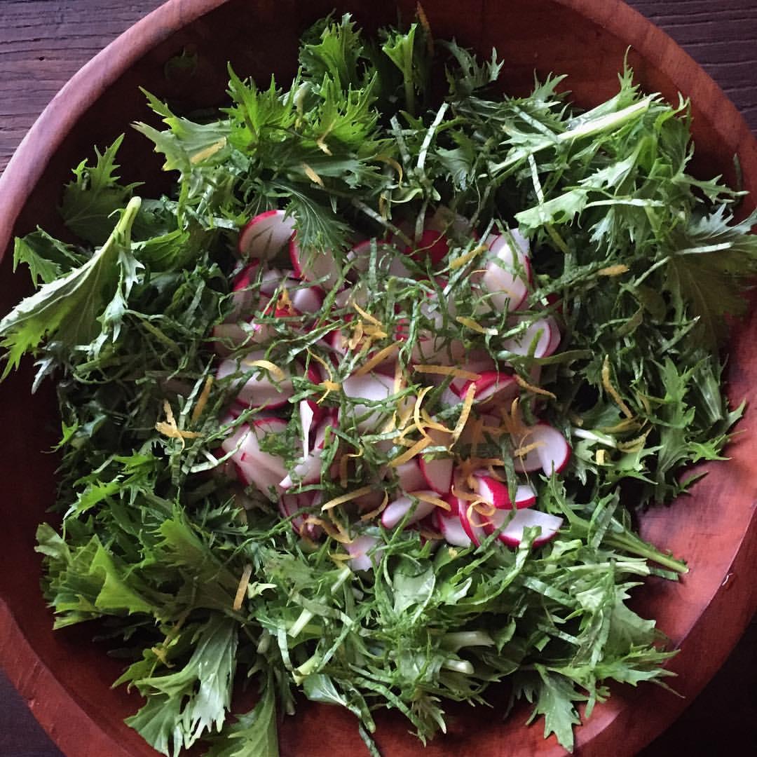 Salad, Radish, Mizuna, Lemon Zest