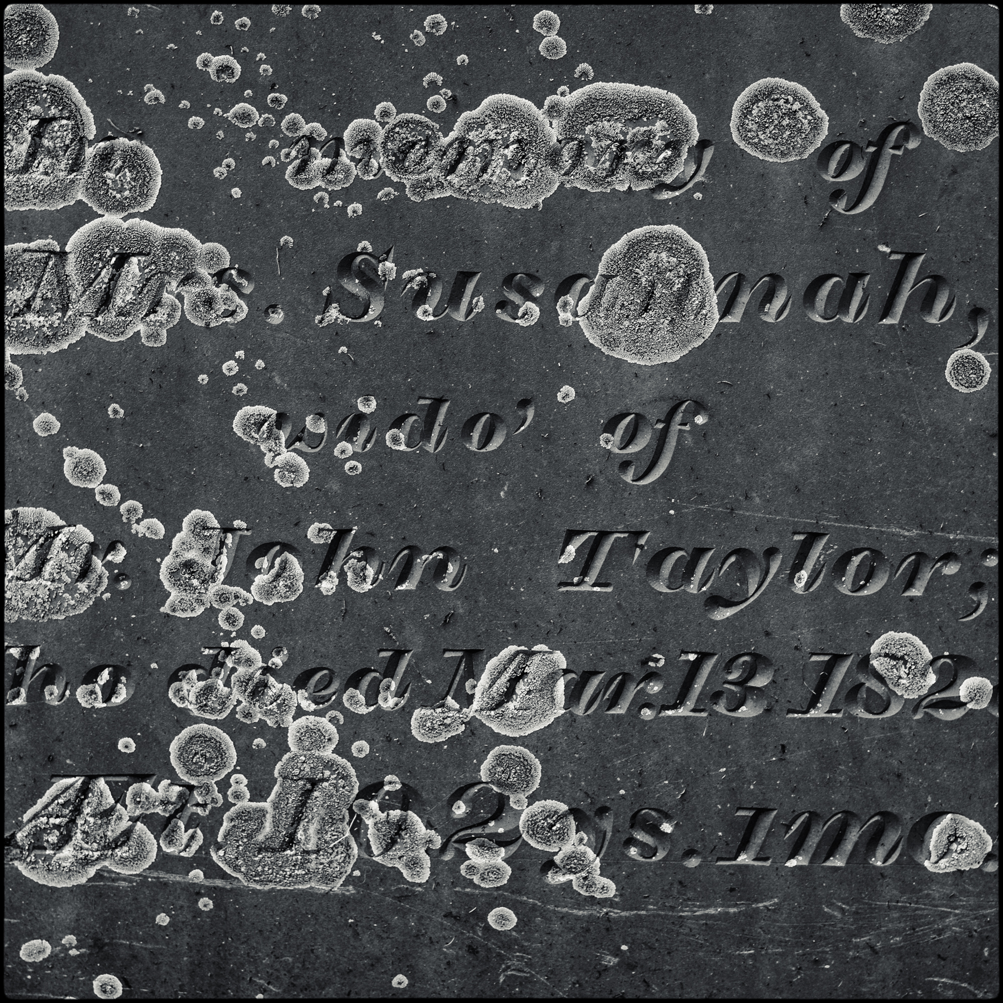 Orleans Cemetery-1.JPG