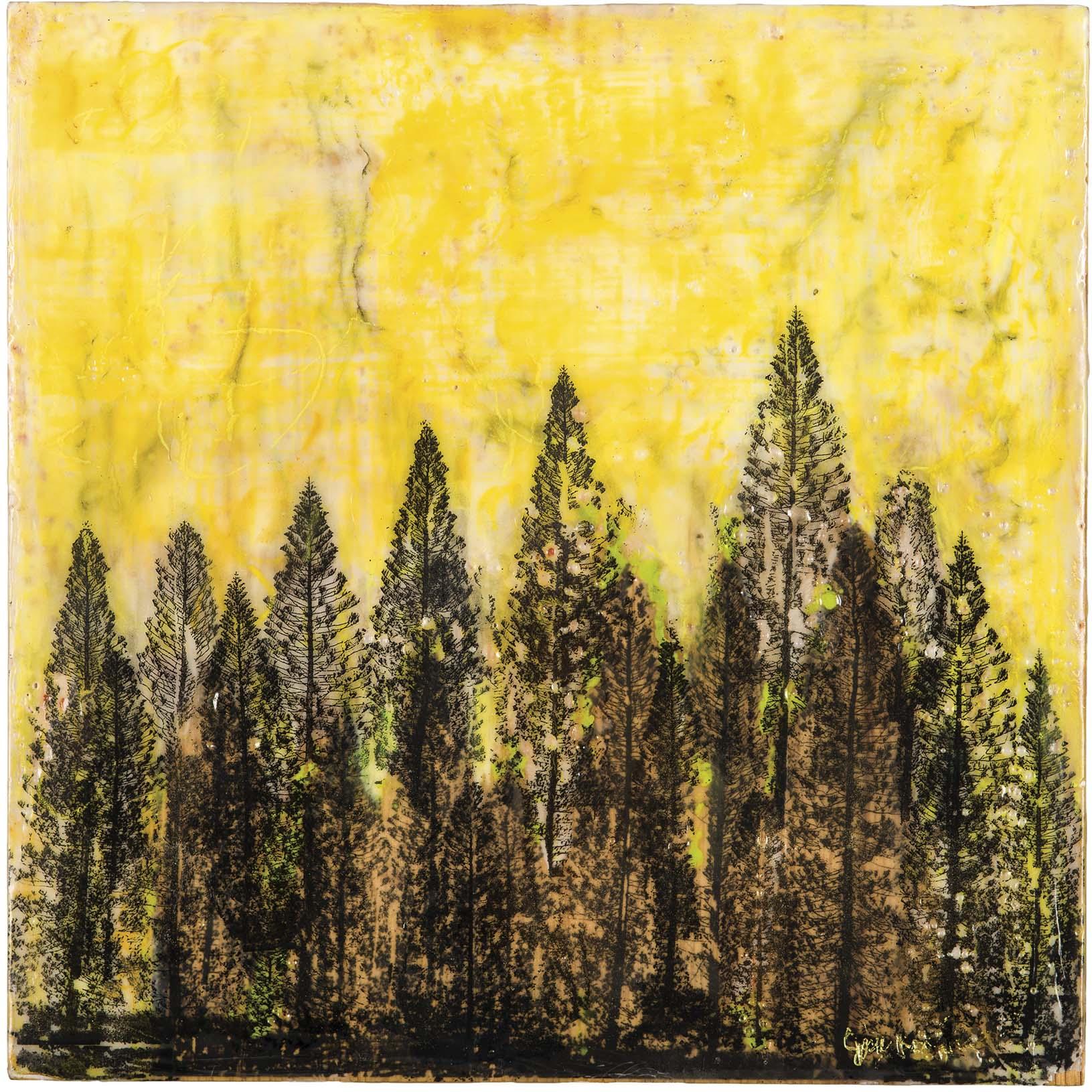Josie Rodriguez  (CA)  Norfolk Pines – Molokai, Hawaii