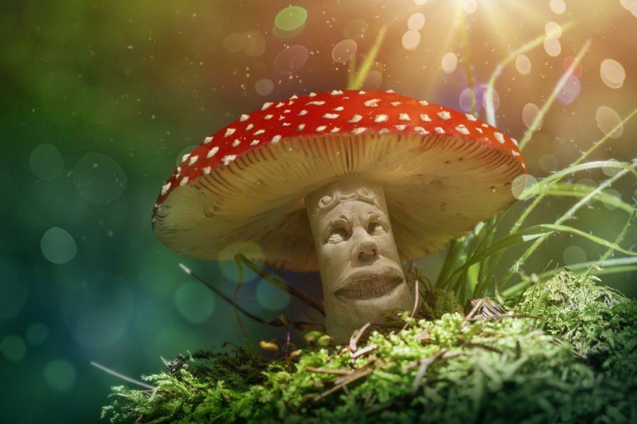 mushroom god.jpg