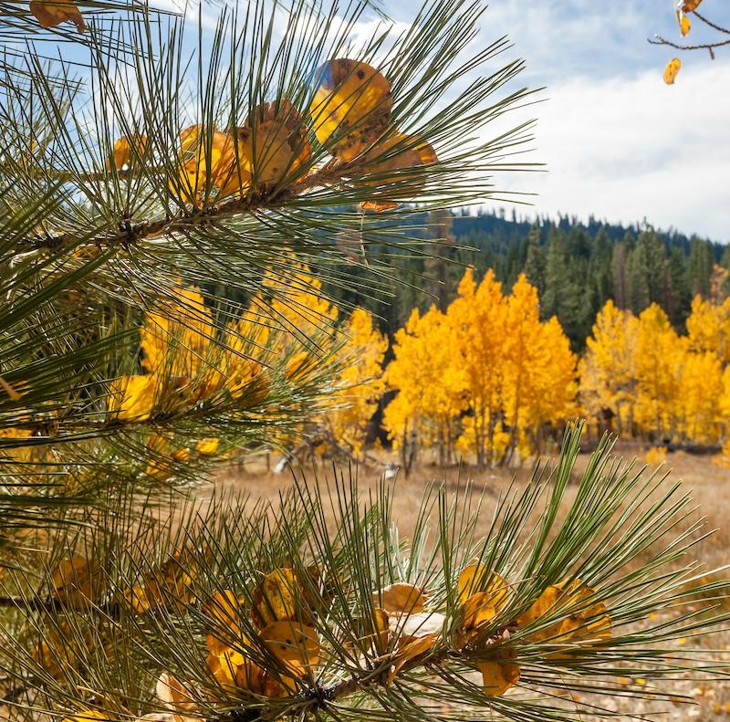 Lake Tahoe Fall Hikes