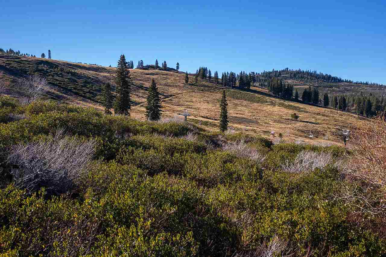 SOLD! Ski Area Lot in Tahoe Donner