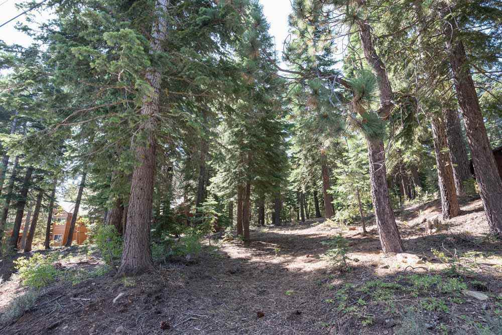 OFF THE MARKET: Tahoe Donner Lot