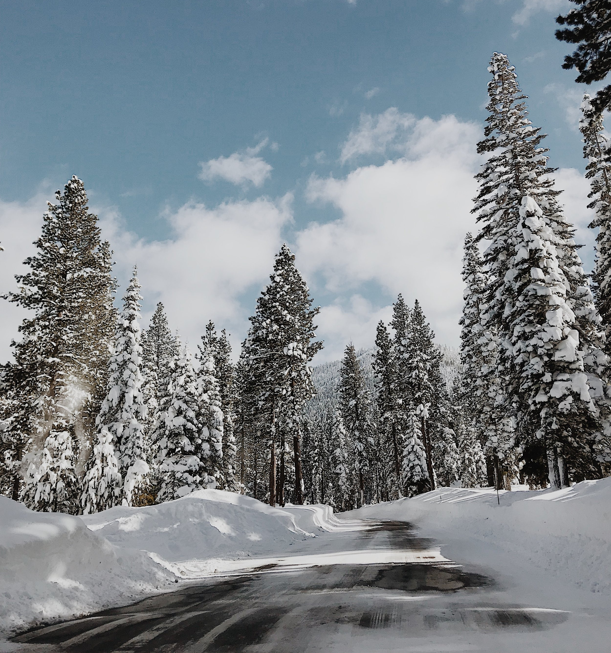 Truckee Winter 2019