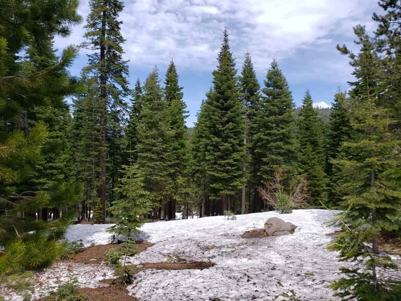 SOLD! Tahoe Donner Land Near Trails
