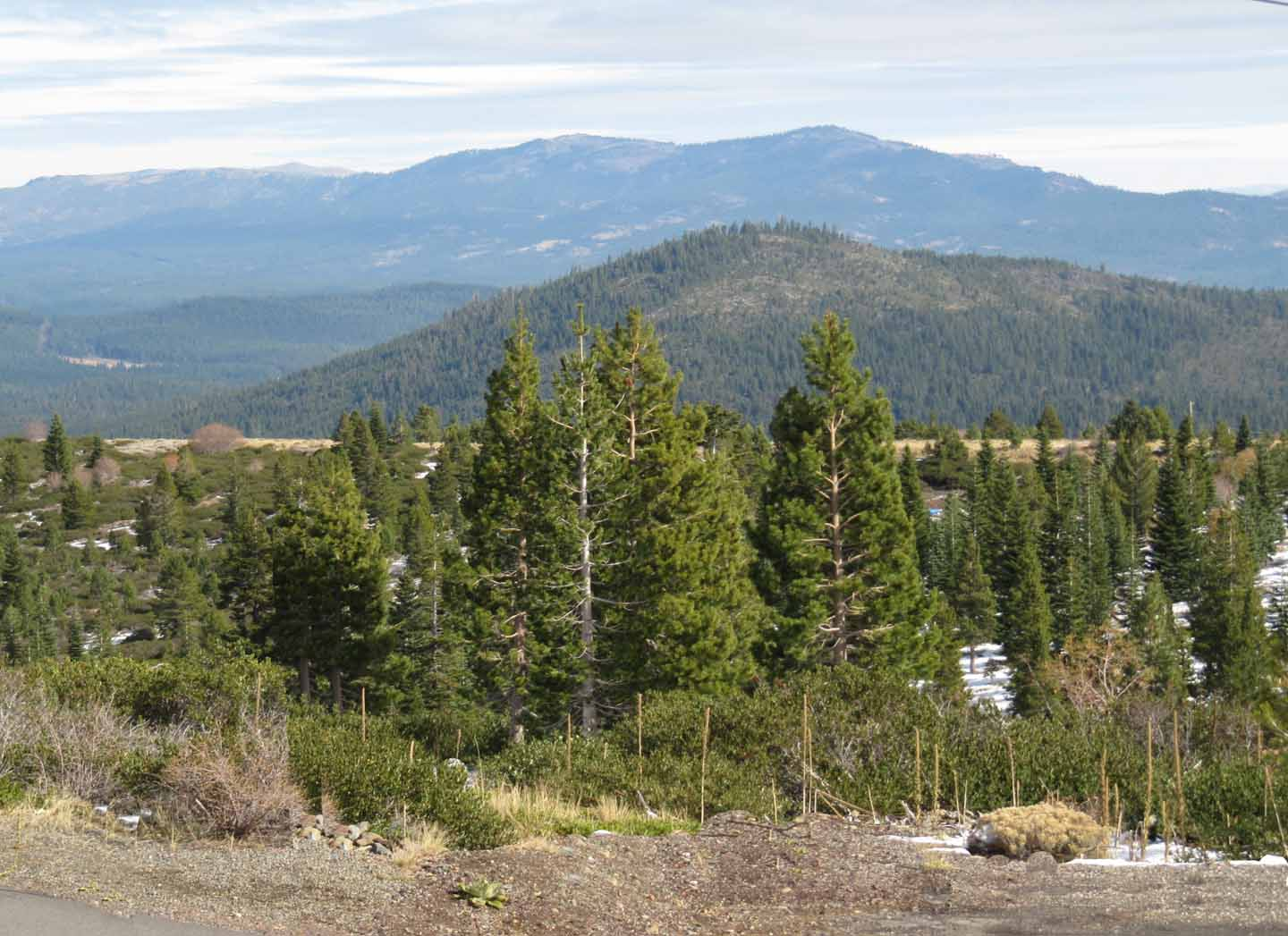 Vacant Lot with Stunning Views of the Sierras
