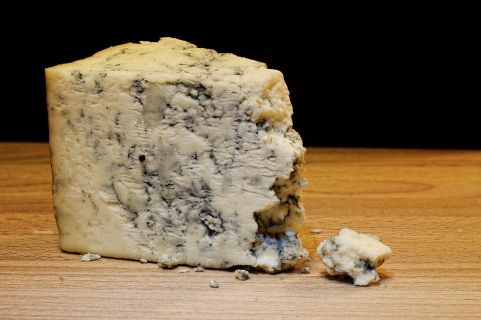 mold-cheese-933309_960_720.jpg
