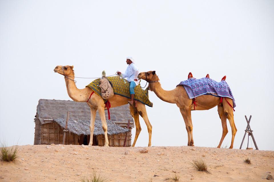 desert-639297_960_720.jpg
