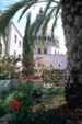 10 - Day Holy Land Picture2.jpg