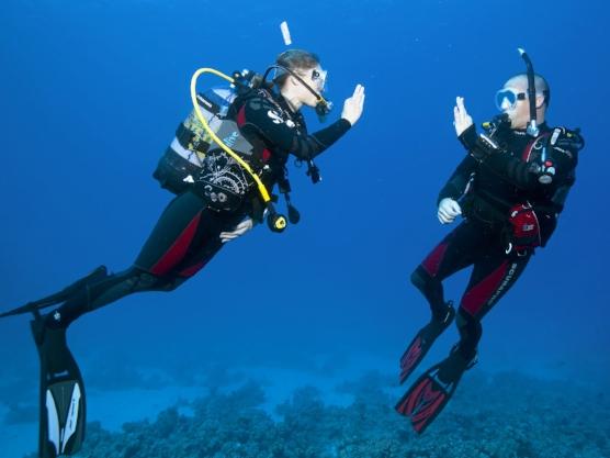 SSI-Diving30.jpg