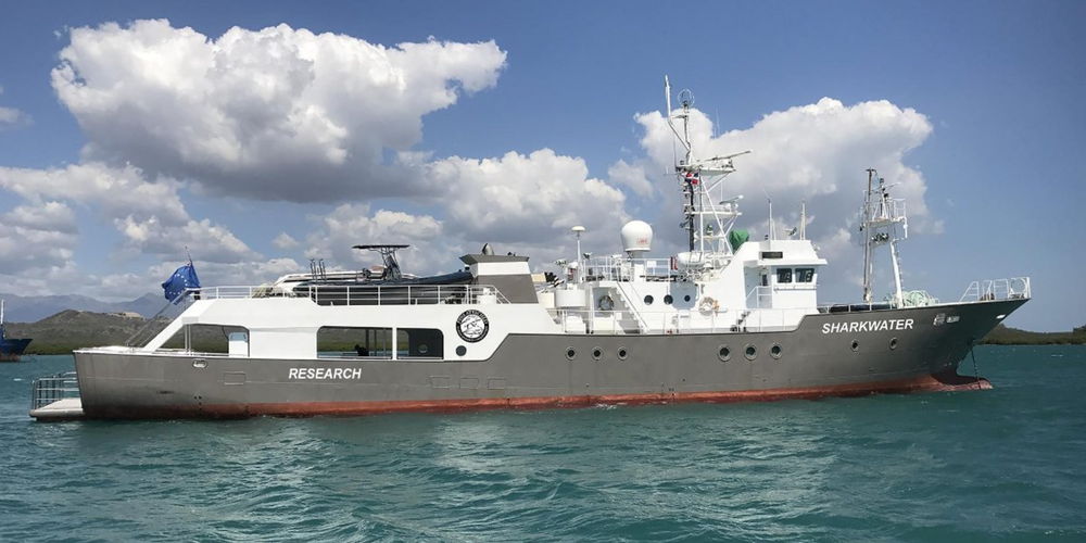 Fins Attached Research Vessel - The Sharkwater