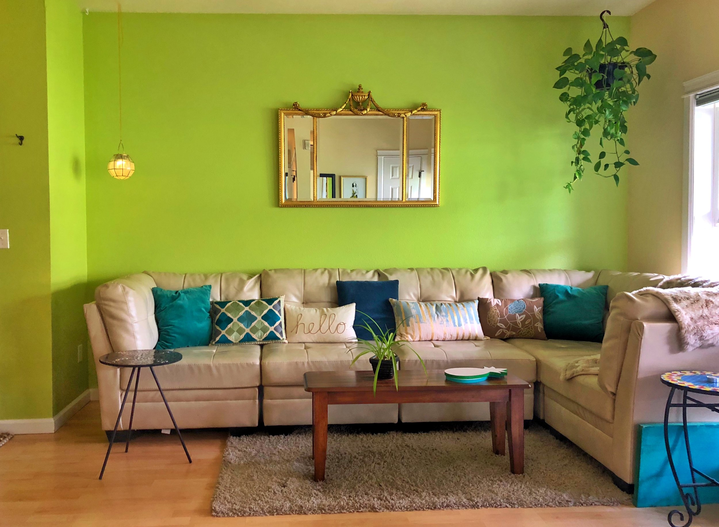 "The living room of one of Amy's listings in Boulder, Colo. She says: ""The natural world is very important to me; I love that my accent wall is a bright yet nature-based shade of green—it reminds me of a young plant, ready to spring to life. I match my pillows and other objects to it, and of course I love hanging real plants nearby to give the feeling of a modern, organic space."""
