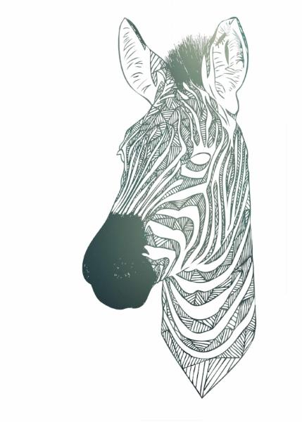 zebra gradient - SMALL.jpg