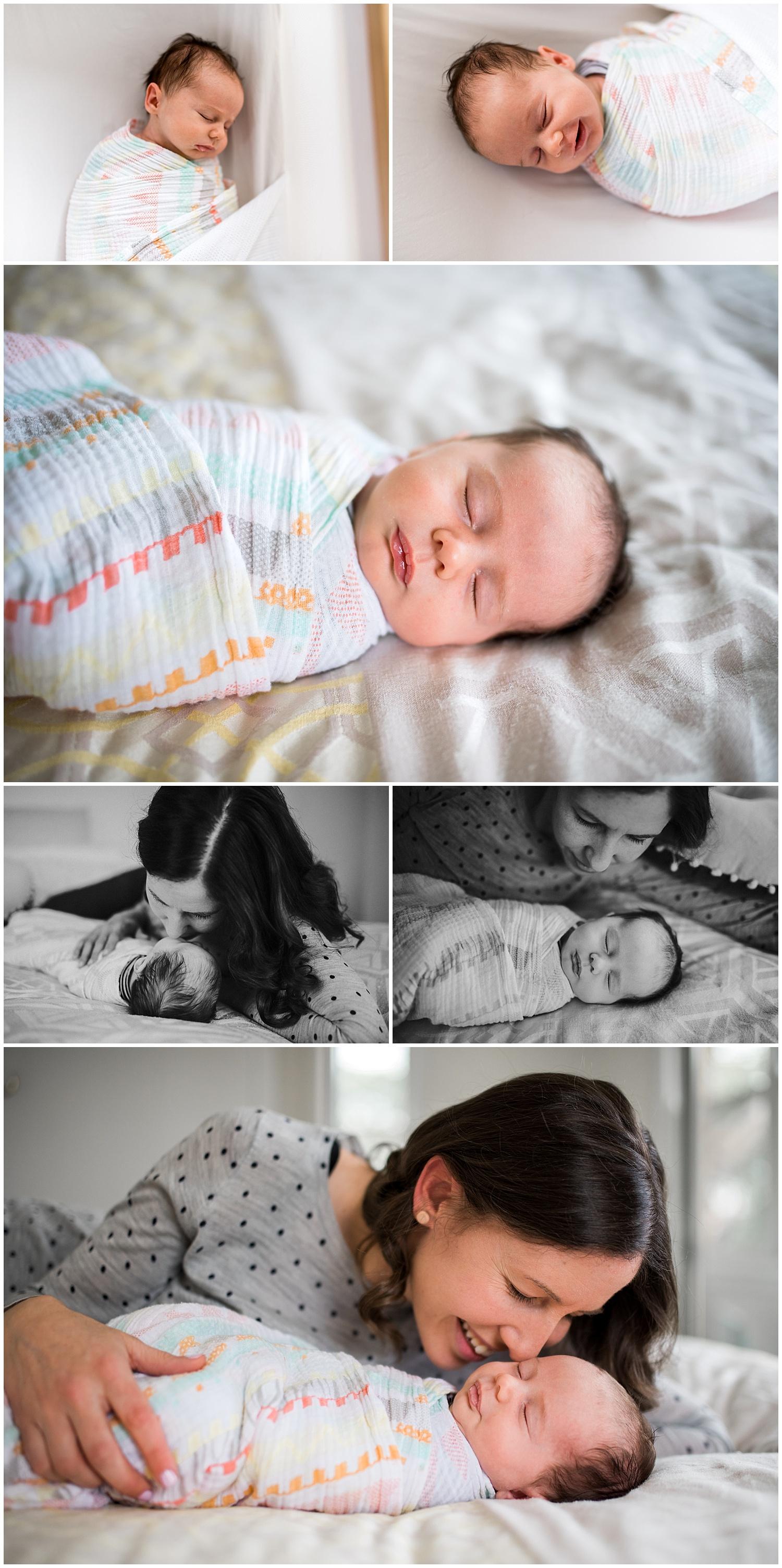 bayside newborn photographer