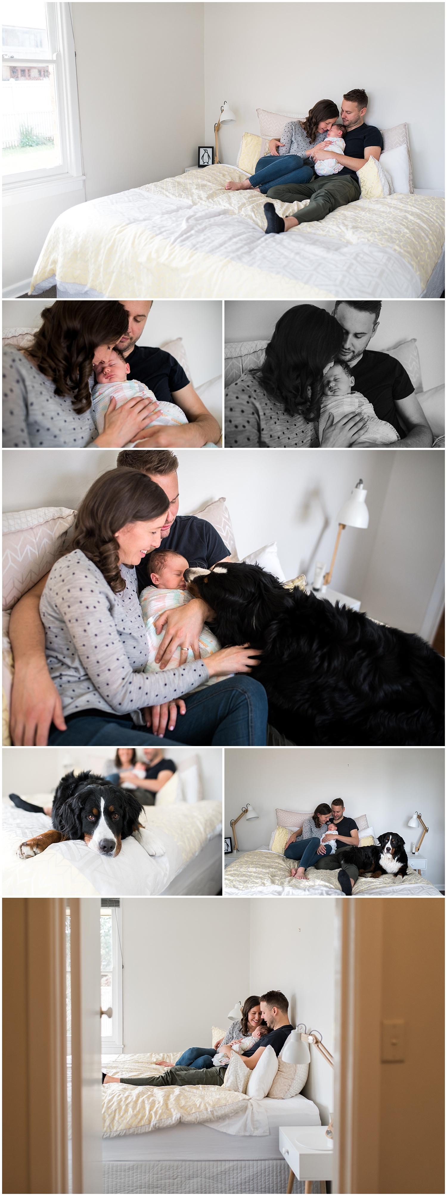 camberwell newborn photographer
