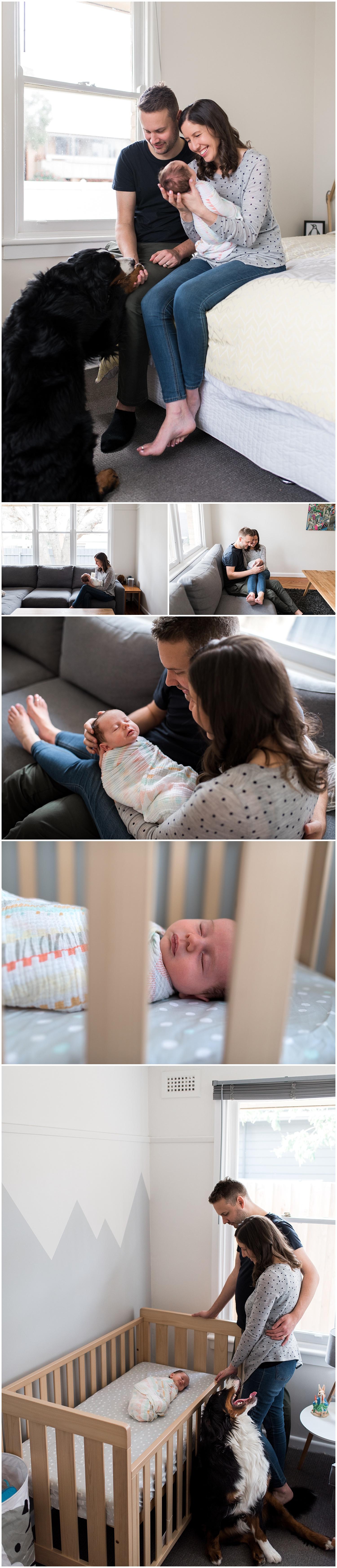 brunswick newborn lifestyle photographer
