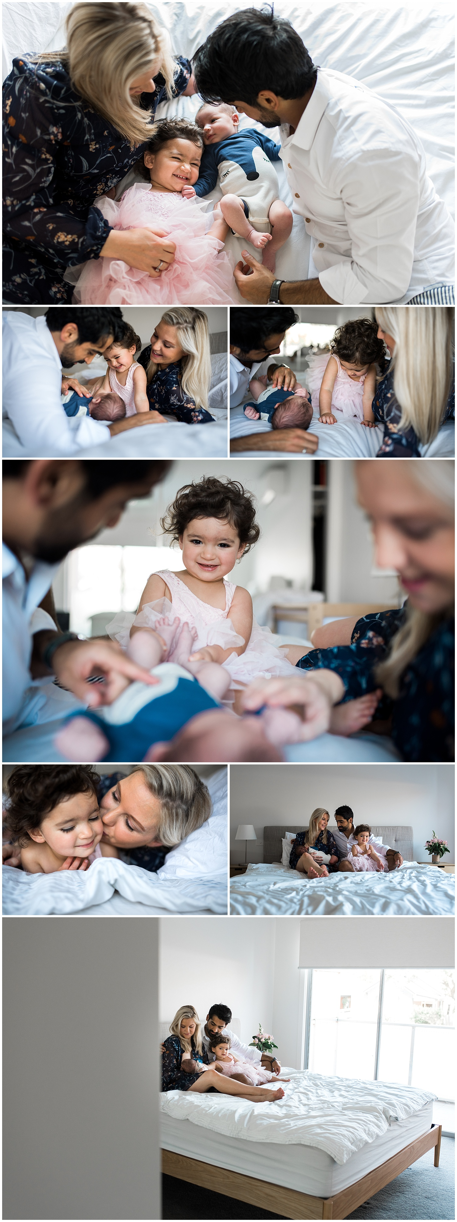 elwood newborn photography